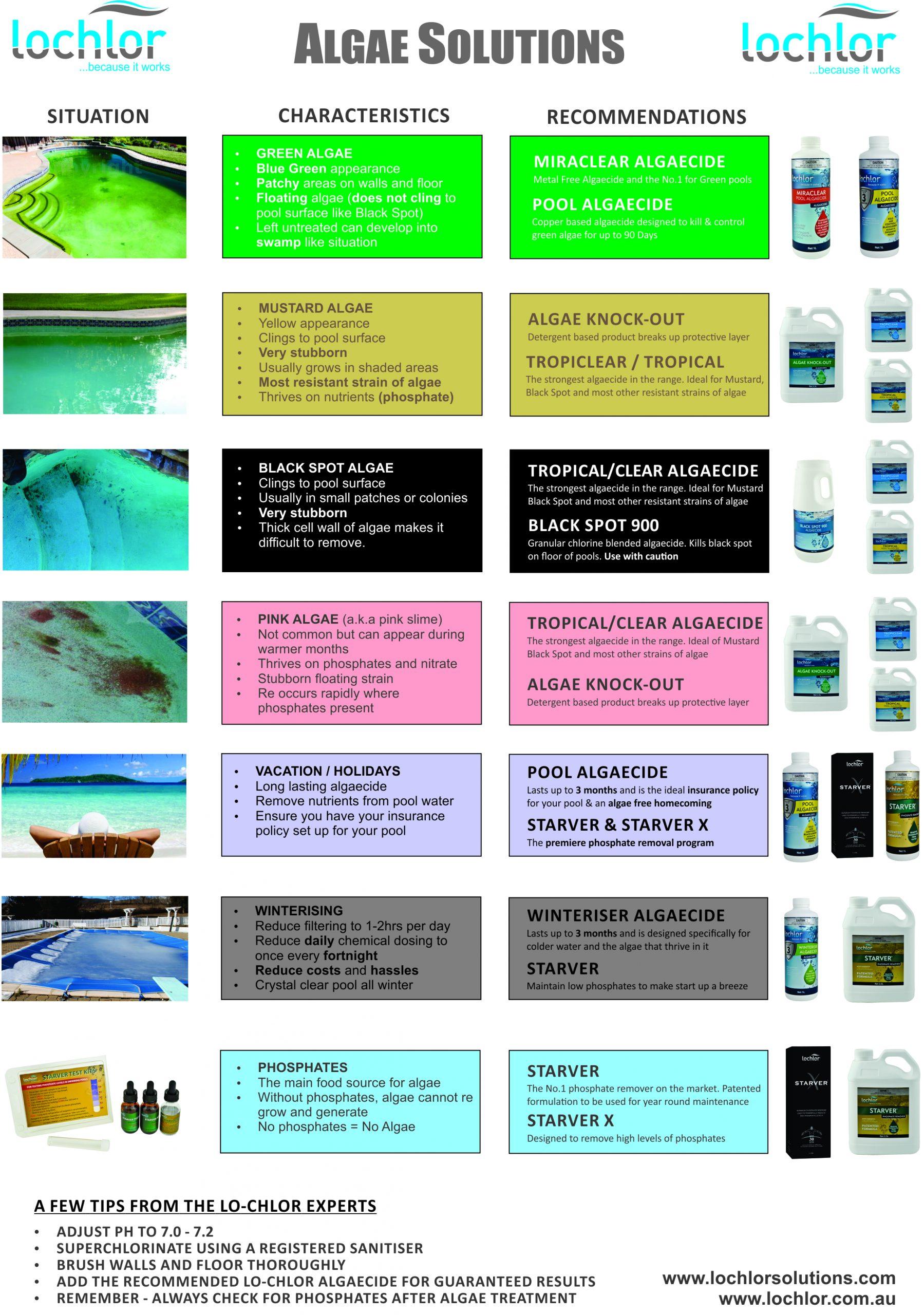 Atlantis-Pool-Shop-Algae-Solutions-Chart